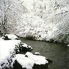Snowy Creek, Utah by steveschwarz