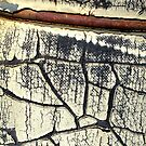 Peeling Paint 10 of 10 by Betsy  Seeton