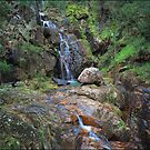 Wombeyan Falls - Mid Section by Peter Hill