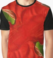 Red Geometry Graphic T-Shirt