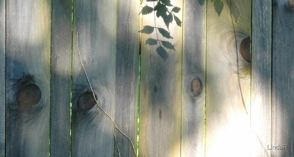 Knotting Wood... by LindaR