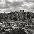 Boneyard Bold II by Peter Hill