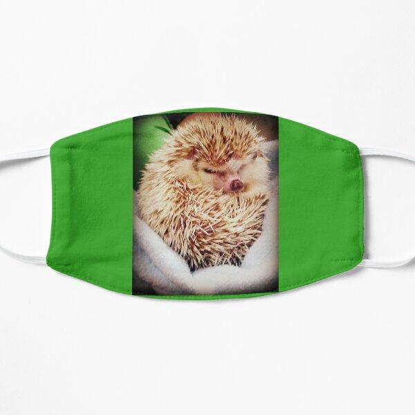 Hedgehog Flat Mask