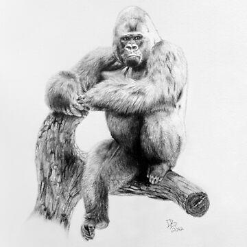 Gorilla, 2012, Pencil by LaughingMantis