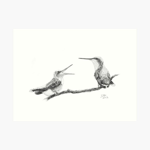 Ruby-Throated Hummingbird: Mother and Chick, 2012, Pencil Art Print