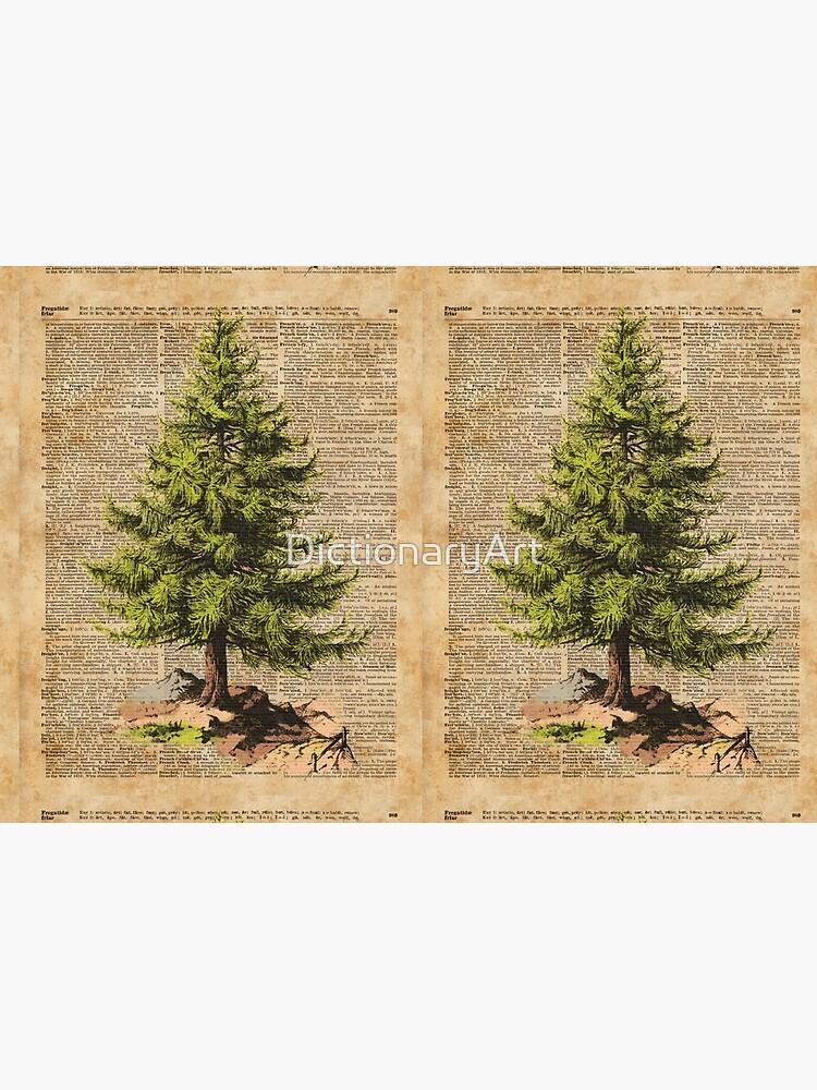Kiefer, Cedar Tree, Wald, Natur-Wörterbuch-Kunst, Weihnachtsbaum von DictionaryArt