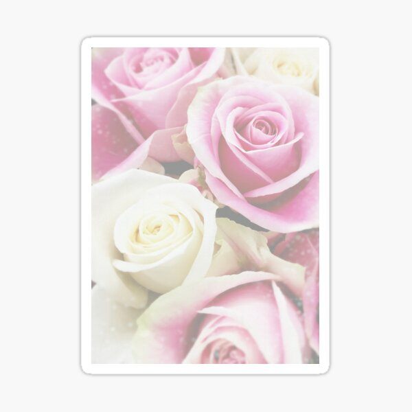 Colourful rose bouquet in pastel colours. Sticker
