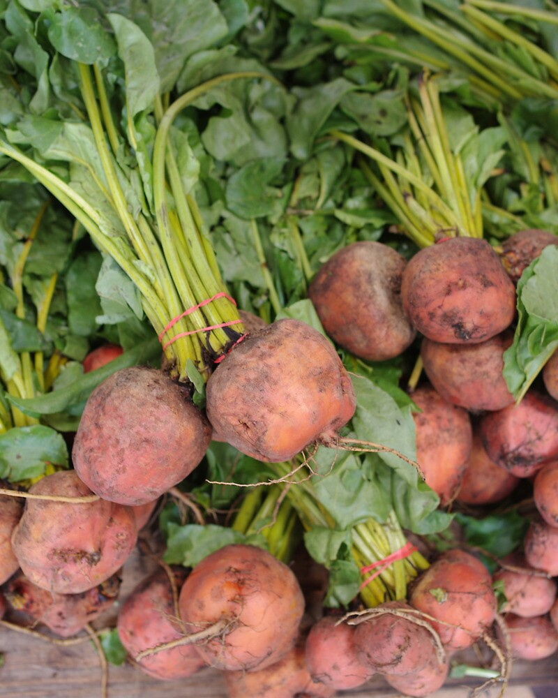 More Bunches of Beets by Tom  Reynen