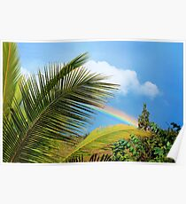 Tropical Rainbow Poster