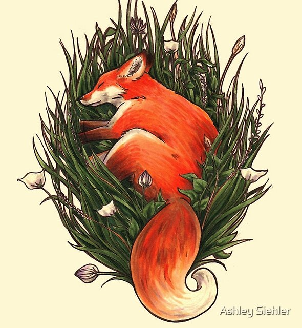 Fox in the Brush by Ashley Weiler