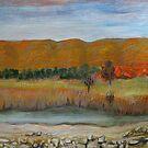 Finke River by Lyn Fabian
