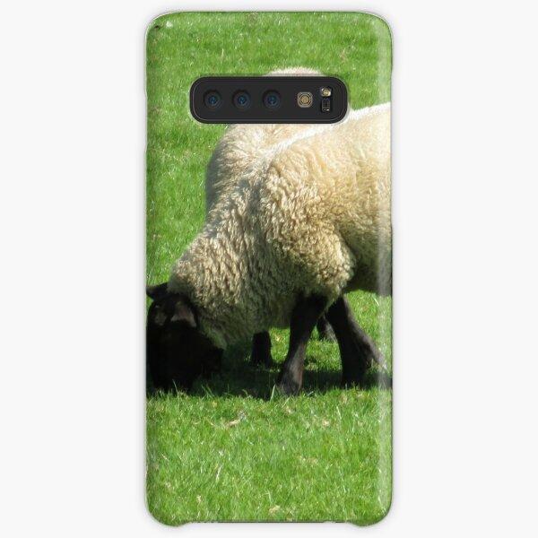 Merch #76 -- Sheep - Shot 2 (Hadrian's Wall) Samsung Galaxy Snap Case