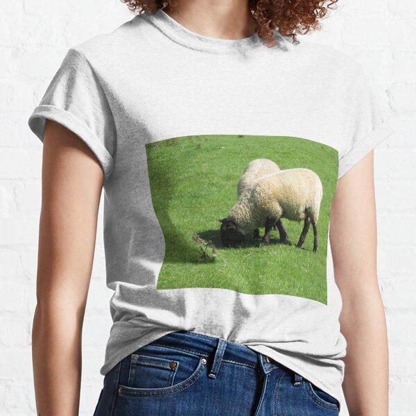 Merch #76 -- Sheep - Shot 2 (Hadrian's Wall) Classic T-Shirt