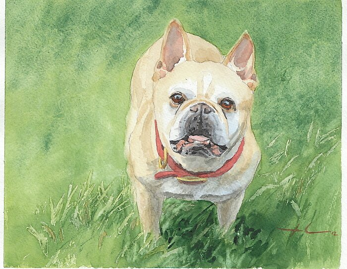 Little tough dog watercolor by Mike Theuer