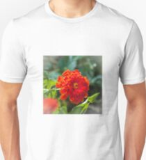 Last annuals of fall T-Shirt