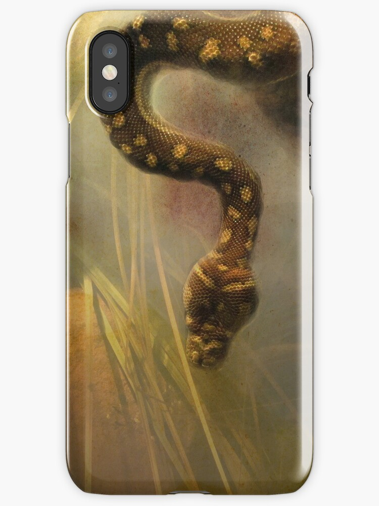 Slither iPhone/iPod Case by Carol Bleasdale