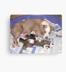 Dream Has Puppies Canvas Print