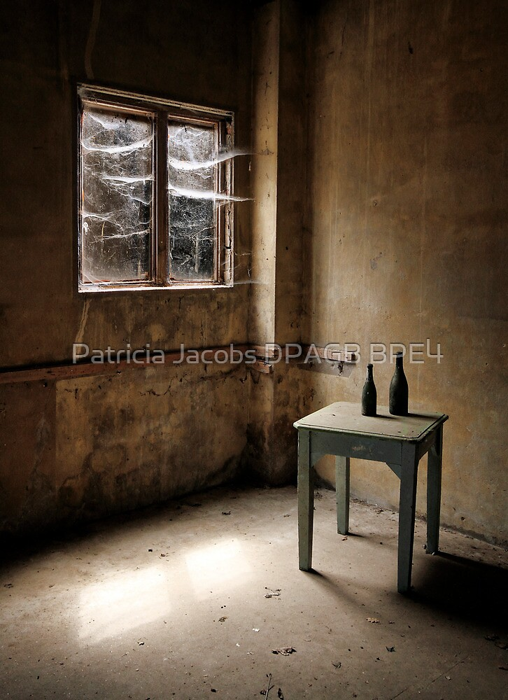 Cobwebs at the Window by Patricia Jacobs DPAGB LRPS BPE4