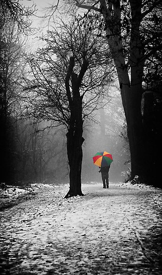 A Lonely Winters Walk by Patricia Jacobs DPAGB LRPS BPE4
