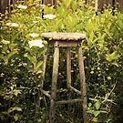 The Garden Stool by Widcat