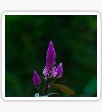 Purple spike Sticker