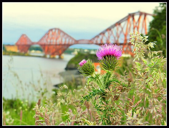 Made in Scotland..from girders! by weecritter