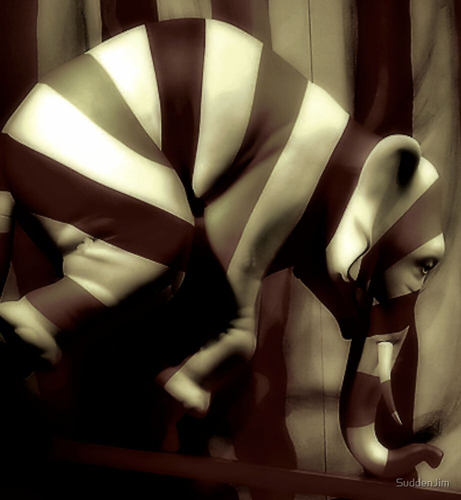 Almost Black And White Stripes by SuddenJim