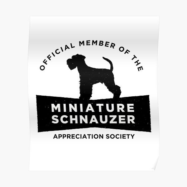 Miniature Schnauzer Appreciation Society (BLK) Poster