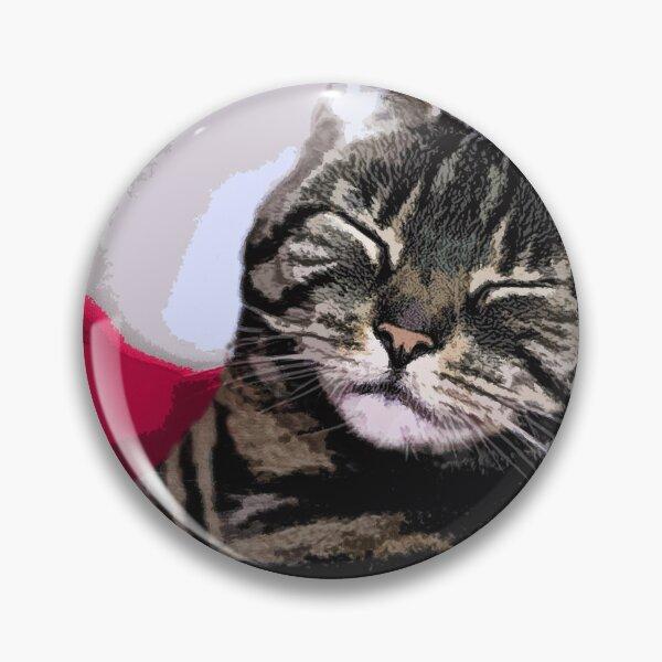 Sleepy Kitty Art Pin