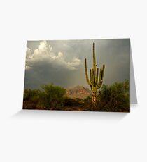 The Golden Saguaro  Greeting Card