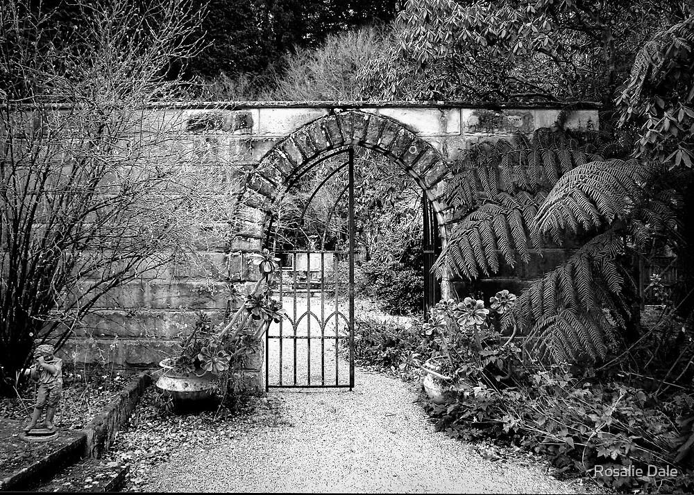 Enticement ~ Yengo Gardens, Mt Wilson (BW Version) by Rosalie Dale