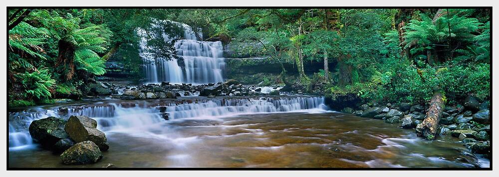 Serenity, Liffey Falls TAS by Chris Munn