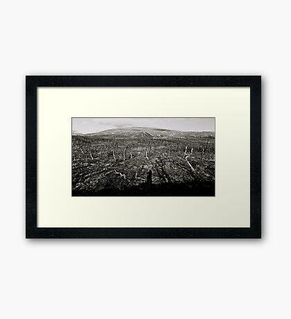 Nordland » Arctic Circle Norway. Framed Print