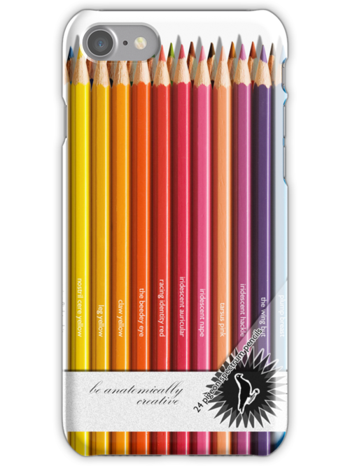 Colouring pencils by acepigeon