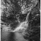 Sheldon Reynolds Falls July 2012 by Aaron Campbell