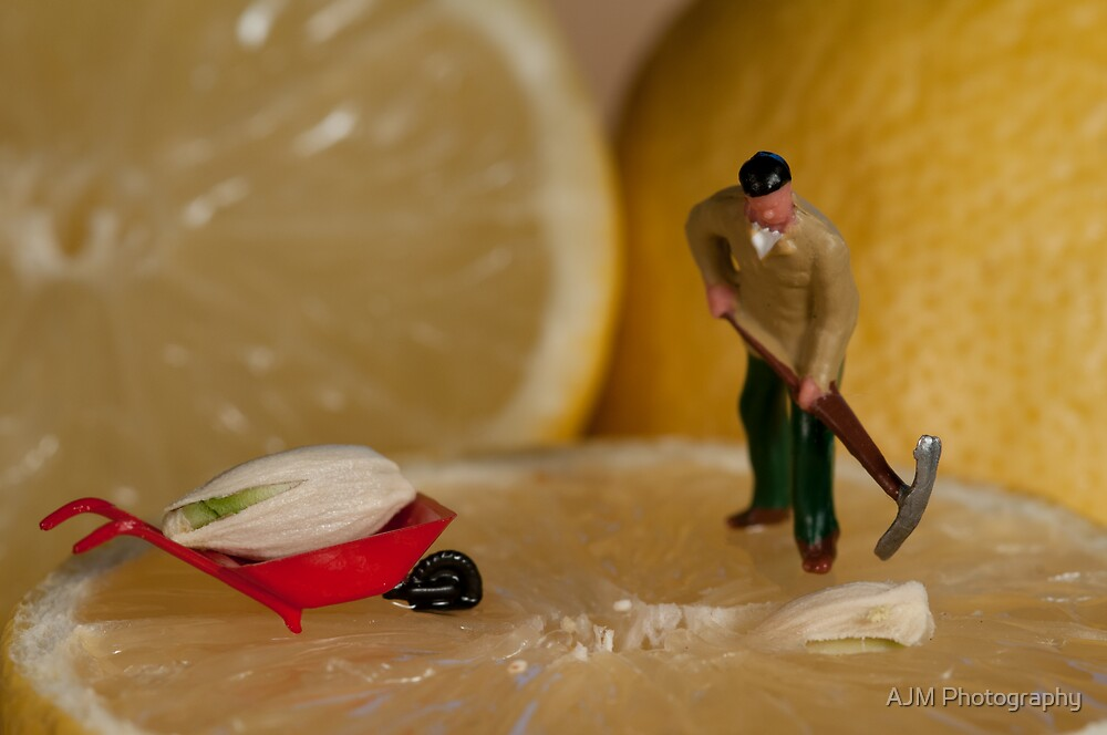 The Lemon Pipper by AJM Photography