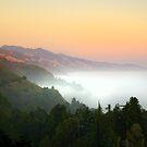 Big Sur Coastline, California by Pete Paul