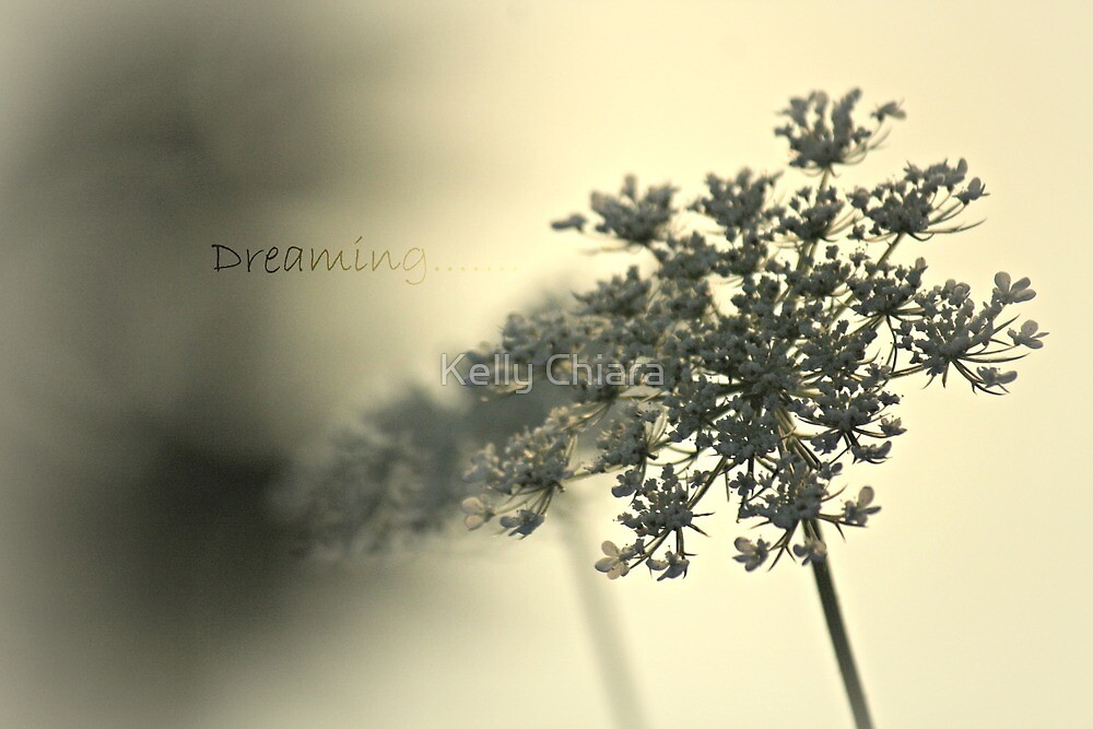 Dreaming........ by Kelly Chiara