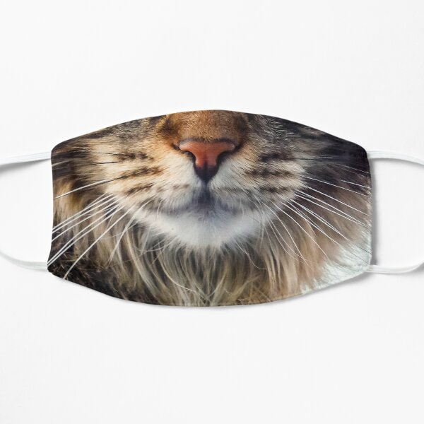 Maine Coon Cat Face Mask Mask