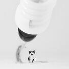 kitty by MarkoBeslac