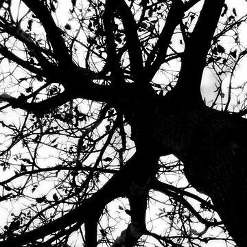 neurons by MarkoBeslac