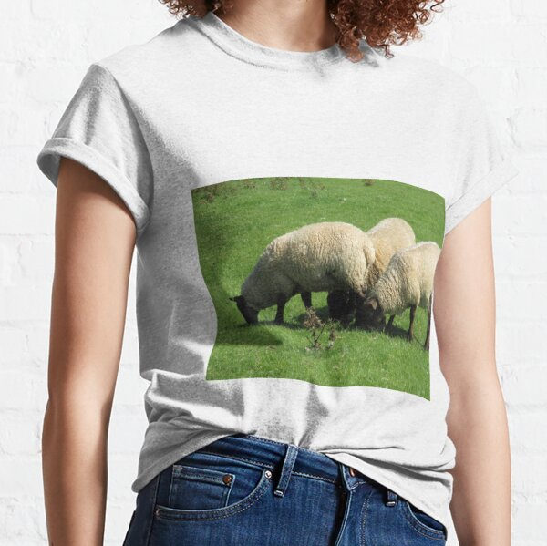 Merch #77 -- Sheep - Shot 3 (Hadrian's Wall) Classic T-Shirt