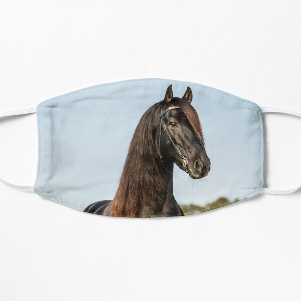The Friesian Experience - Stallion Droomie Mask