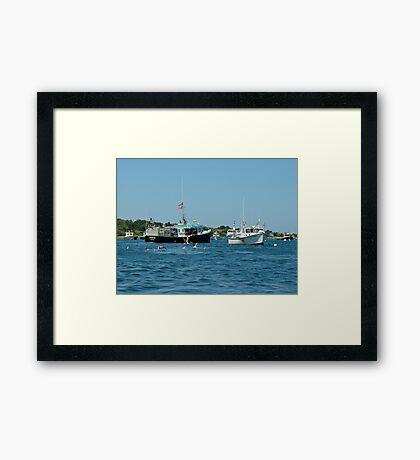 Sleepy Boats at Chatham Harbor - Cape Cod  MA Framed Print