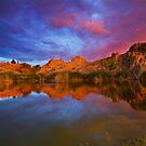Reflected Vibrance by Sue  Cullumber
