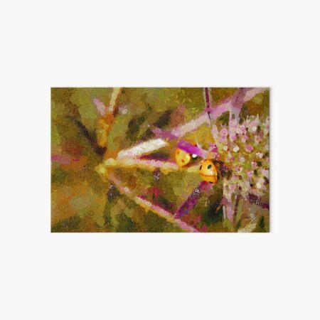 Two Ladybirds meet on a Sea Holly Flower Art Board Print