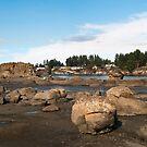Nanoose Bay, Vancouver Island by Steve Hunter