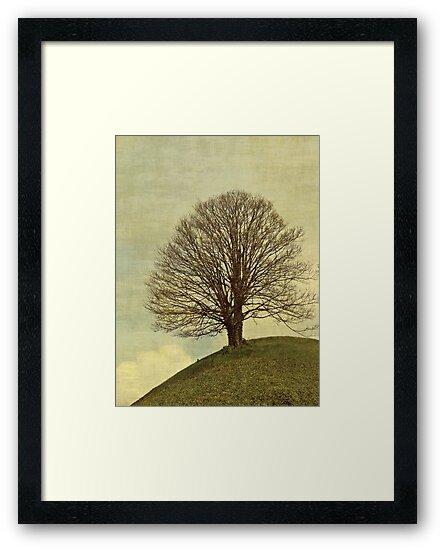 Hill top by Anne Staub