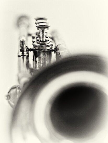 Solo... by Bob Daalder