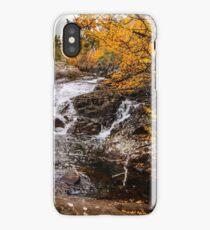 Deciduous Beech. Grail Falls, Tasmania iPhone Case/Skin